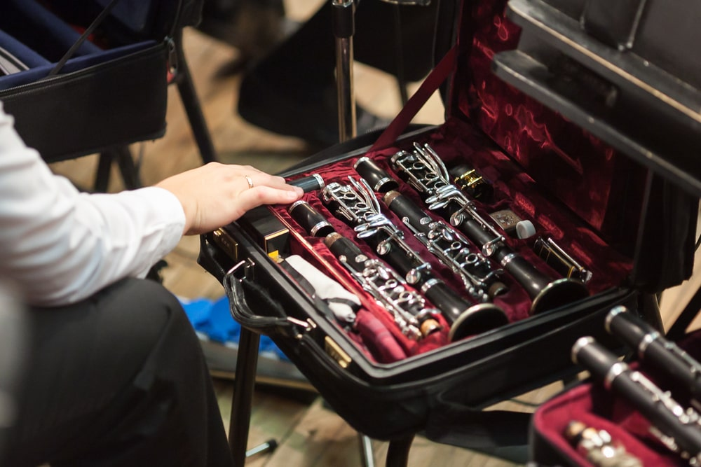 Review & Buying Guide of clarinet cases